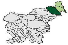 Slovenskegorice