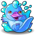 504 water platypus B