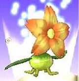 Plant MR3