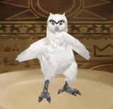 Owlden MMR