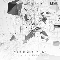 Karma Fields - New Age Dark Age LP
