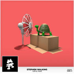 Stephen Walking - Turtle Town