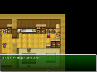 SeedofMagic Witchhunt Village Item Shop