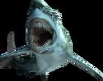 3rdGen-Fish Render 001