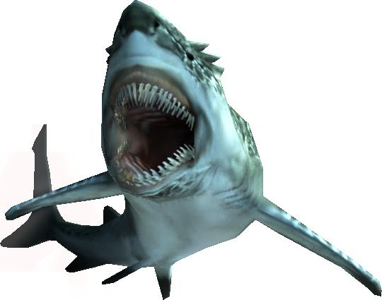 File:3rdGen-Fish Render 001.png