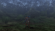 MHFU-Forest and Hills Screenshot 019