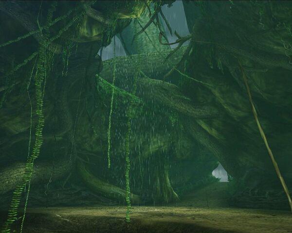 File:TreeApex1.jpg