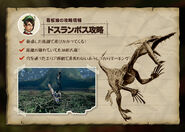 MH4-Velocidrome Strategy