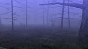 MHFU-Old Swamp Screenshot 005