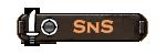 1SnS button2