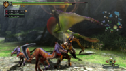 MH3U-Qurupeco Screenshot 002