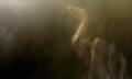 Thumbnail for version as of 16:23, September 18, 2014