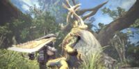 Great Jagras Photo Gallery