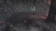 MHFU-Old Swamp Screenshot 008