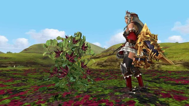 File:MHFGG-Flower Field Screenshot 008.jpg