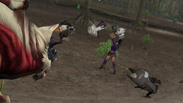 File:FrontierGen-Gogomoa Screenshot 005.jpg