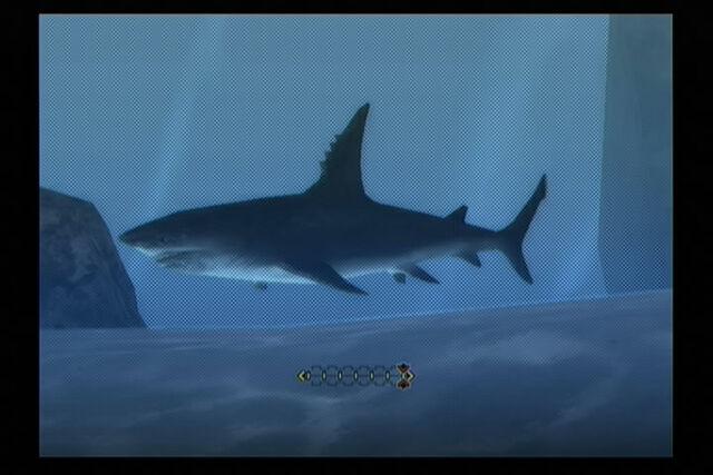 File:Mh3 shark.jpg