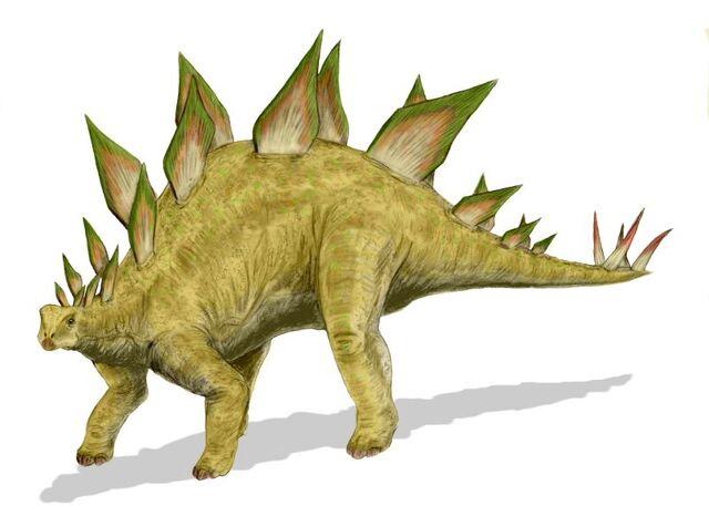 File:Stegosaurus BW.jpg