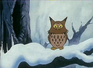 Owl in Forest of Witches