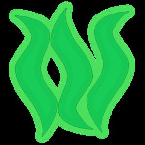 File:Seaweed e.png