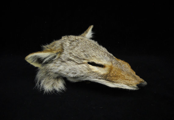 File:Coyote face mask.jpg