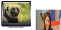 Zoboomafoo next on kids cbc