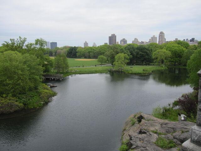 File:Turtle Pond.jpg