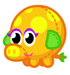 Cuddly Mrsnoodle