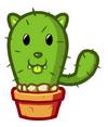 Catacactus