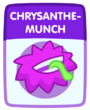 Chrysanthemunch