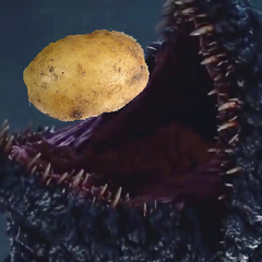 G01 eats a potato.