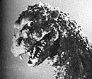 File:1954 ShodaiGoji.jpg
