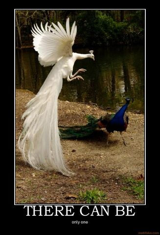 File:There-can-be-peacock-one-highlander-demotivational-poster-1289765548.jpg