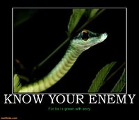 http://www.motifake.com/know-your-enemy-green-snake-eat-you-demotivational-posters-150958
