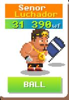Senor Luchador