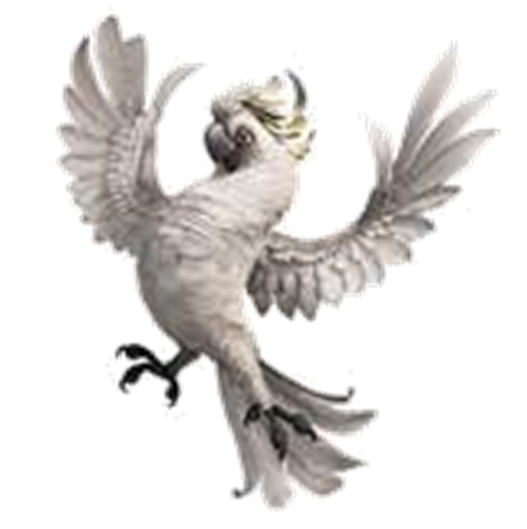 File:Nigel the Cockatoo.png
