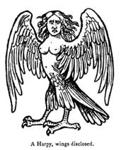 Harpy bitch