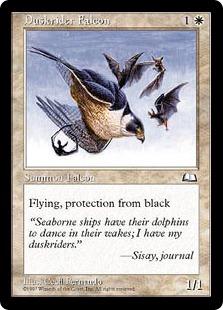 Duskrider falcon WL