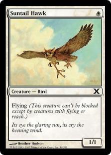 File:Suntail Hawk 10E.jpg