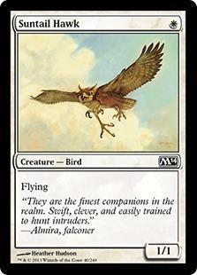 File:Suntail Hawk M14.jpg