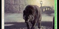 Watchwolf (TL)