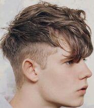 Connor Cornet side of head