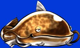 FruleNamazupal1