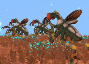 Xenopterans facing left