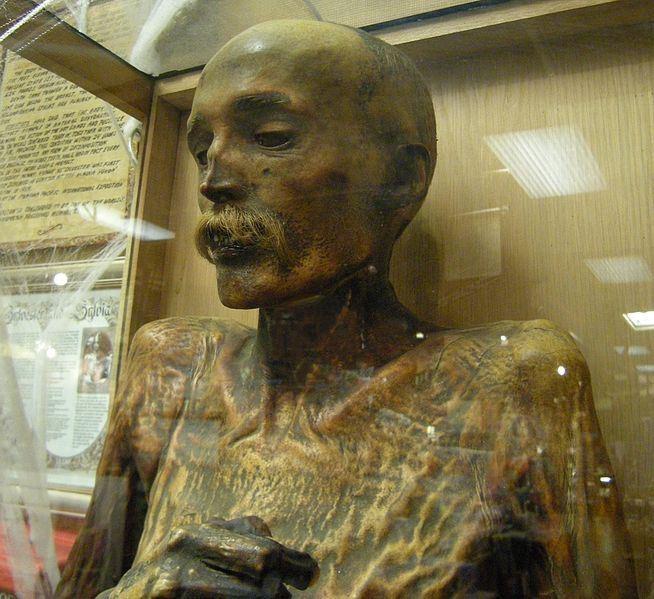 Sylvester the Mummy   Mummipedia Wiki   FANDOM powered by ...
