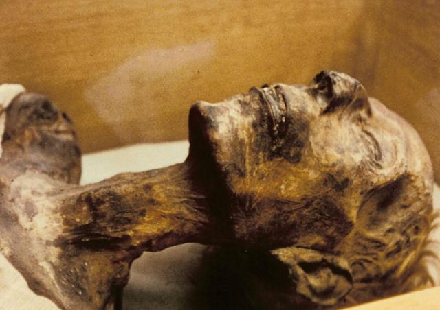 File:King Ramessess III's mummy.PNG