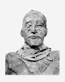 Ramses III mummy head