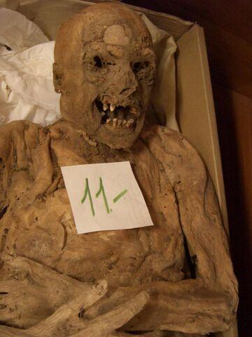 File:Mummy-1459451200.jpg