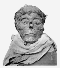 Ahmose-mummy-head