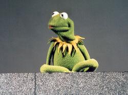 KermitSS